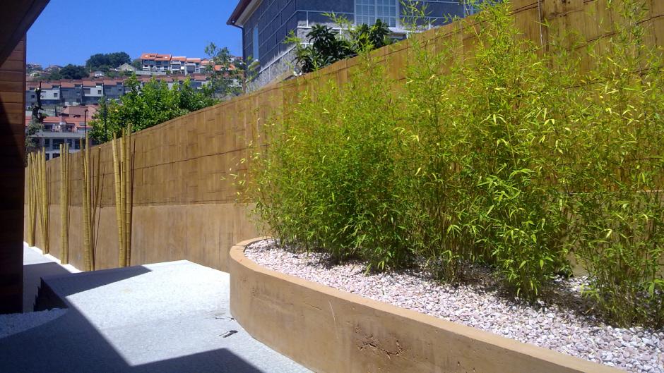 Bambu en maceta exterior trendy reforma de una terraza - Seto de bambu ...