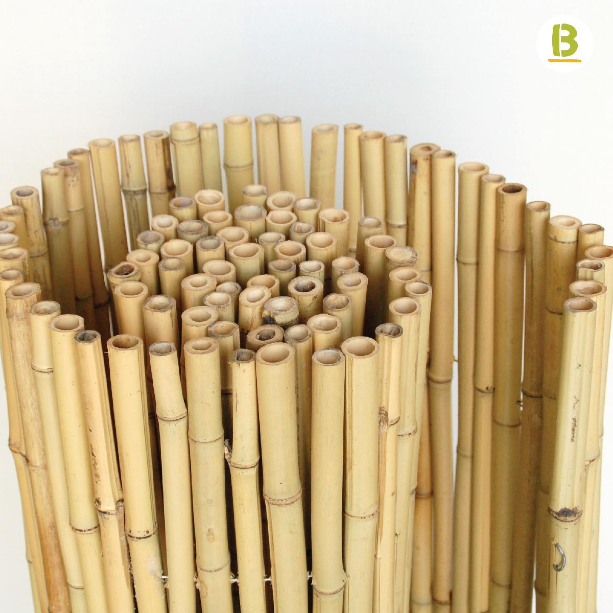 Rollos de bamb 25 bambusa estudio for Bambu seco para decoracion