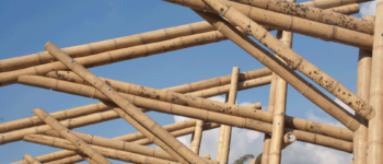 estructura-bambu-guadua