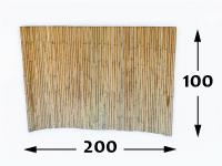 Rolos de Bambú Ø35 - 100-cm-pt-pt - 200cm-pt-pt - moso-pt-pt