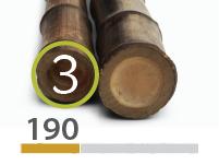 Black Bamboo poles - 3-4-cm-en - 190-m-en