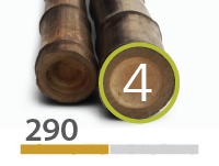 Canas de bambu Black - 4-5-cm-pt-pt - 290-m-pt-pt