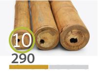 Guadua bamboo poles - 9-11-cm-en - 290-m-en