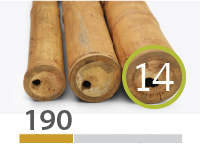 Cañas Bambú Guadua - 13-15-cm - 190-m