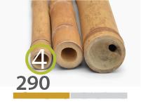 Guadua bamboo poles - 4-5-cm-en - 290-m-en