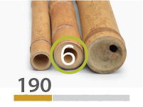 Cañas Bambú Guadua - 5-7-cm - 190-m
