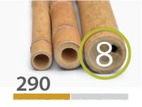 Guadua bamboo poles - 7-9-cm-en - 290-m-en