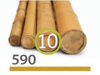 Cañas Bambú Moso - 9-11-cm - 590-m