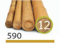 Cañas Bambú Moso - 11-13-cm - 590-m