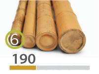 Cañas Bambú Moso - 5-7-cm - 190-m
