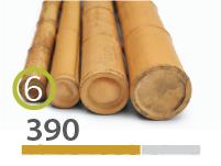 Cañas Bambú Moso - 5-7-cm - 390-m