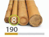 Cañas Bambú Moso - 7-9-cm - 190-m