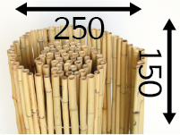 Rolos de bambu Ø25 - 250cm-pt-pt - 150-cm-pt-pt - moso-pt-pt