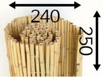 Rolos de bambu Ø25 - 240cm-pt-pt - 250-cm-pt-pt - moso-pt-pt