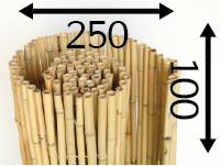 Rollos de Bambú Ø25 - 250cm - 100-cm - moso