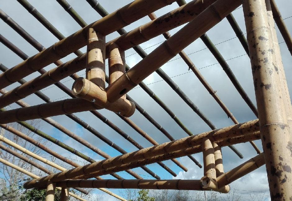 cercha en bambú para techo verde