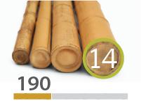 Cañas Bambú Moso - 13-15-cm - 190-m