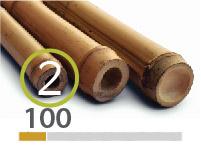 Tonkin bamboo poles - 2-3-cm-en - 100m-en-2