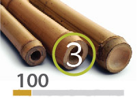 Tonkin bamboo poles - 3-4-cm-en - 100m-en-2