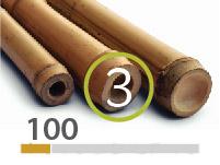 Cañas Bambú Tonkin - 3-4-cm - 100m-2