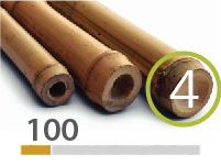 Cañas Bambú Tonkin - 4-5-cm - 100m-2