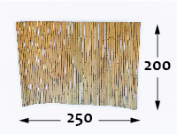 Rolos de bambu Ø25 - 250cm-pt-pt - 200cm-pt-pt