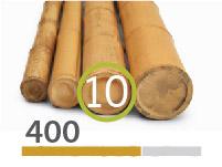 Cañas Bambú Moso - 9-11-cm - 400m