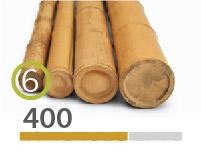 Cañas Bambú Moso - 5-7-cm - 400m