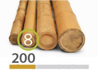 Cañas Bambú Moso - 7-9-cm - 2m