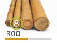 Cañas Bambú Moso - 7-9-cm - 300m