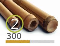 Tonkin bamboo poles - 2-3-cm-en - 300m-en