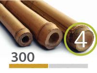 Tonkin bamboo poles - 4-5-cm-en - 300m-en